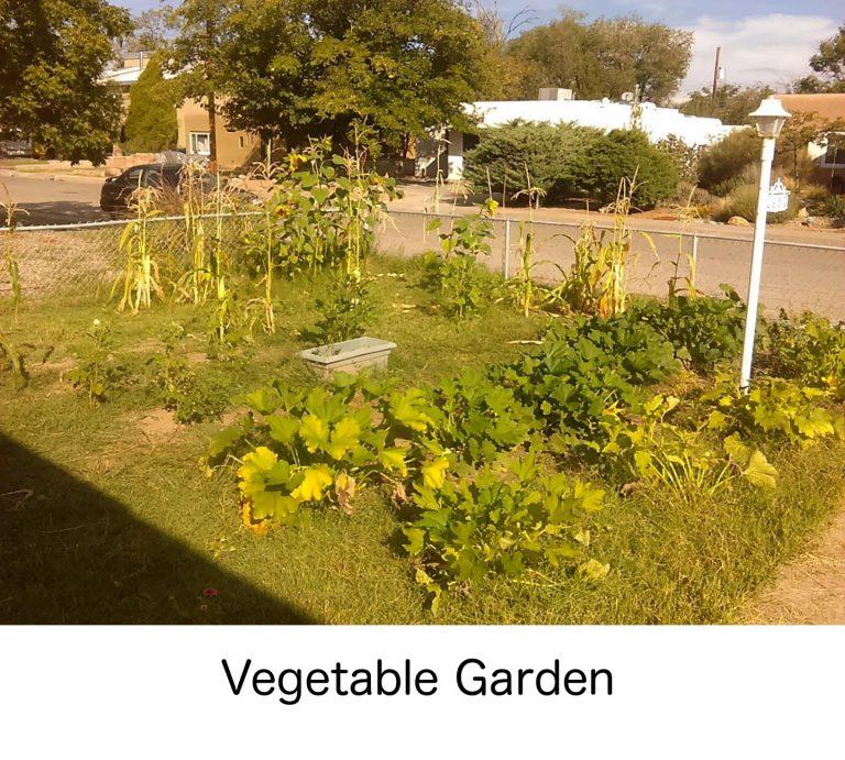 selectyourlandscaping-vegetablegarden-with-caption